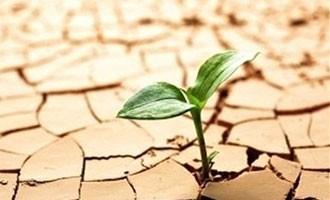 ریشه و عوامل بدحجابی