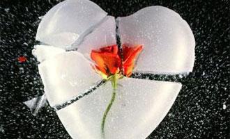 داستان عاشقانه ای برای تو ( مرگ یا غرور )